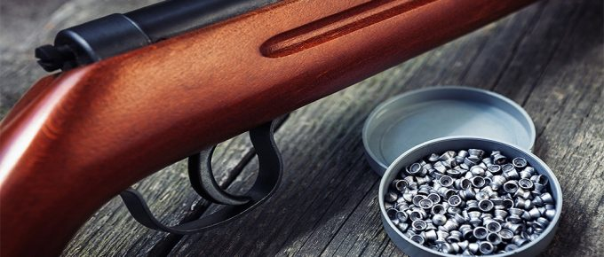 9 Best .177 Pellets For Hunting and High Accuracy